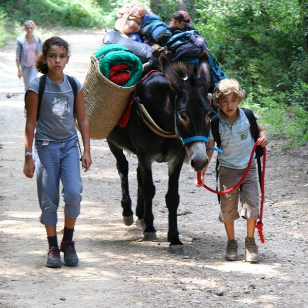 Une randonnée avec des ânes avec Aigoual Pleine Nature